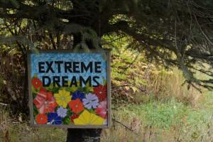A la rencontre de mes rêves. 2015. Haines (Alaska)