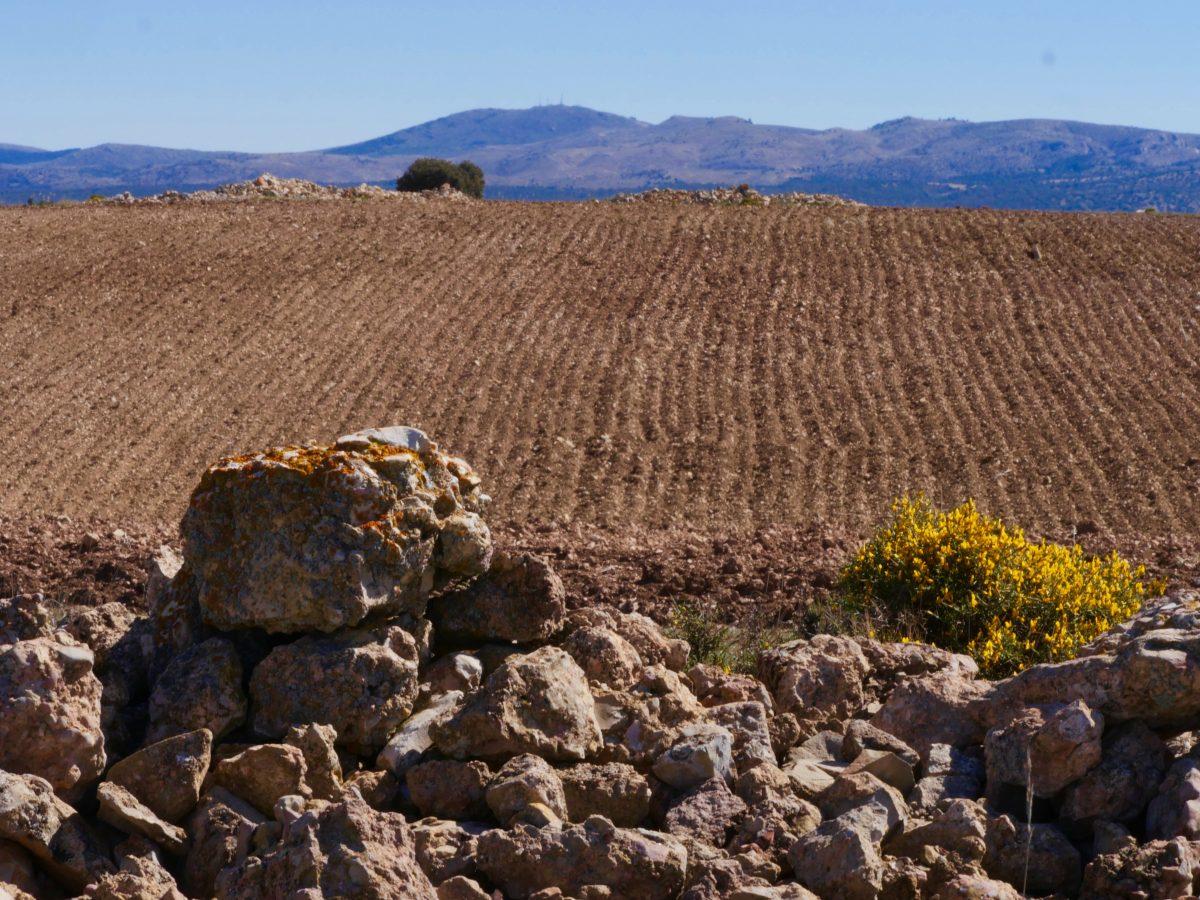 Teruel et le Maestrazgo (Aragon)