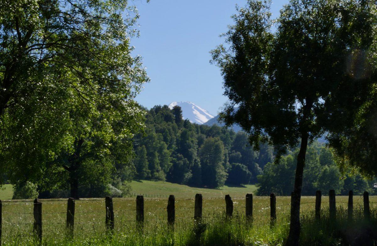 Se la couler verte (De Victoria jusqu'à Villarica)