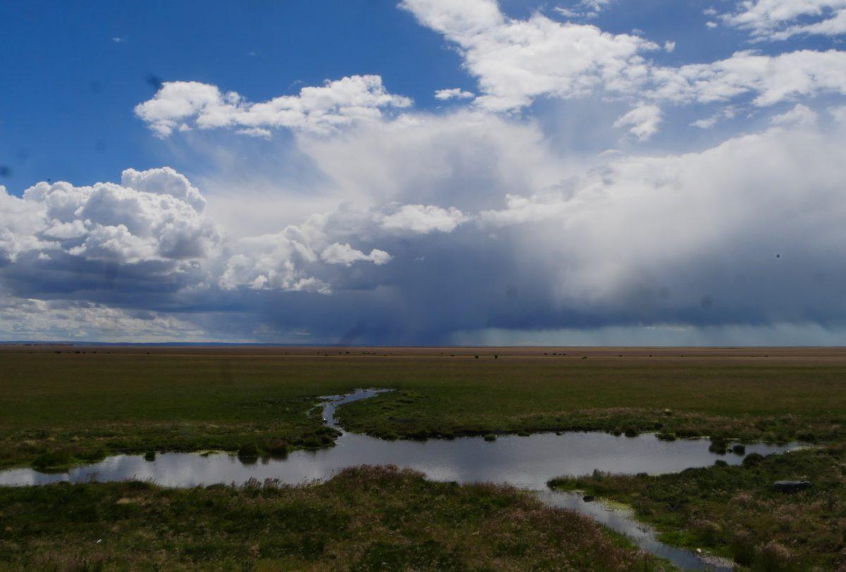 Tierra del Fuego (de Punta Arenas jusqu'à Ushuaia)