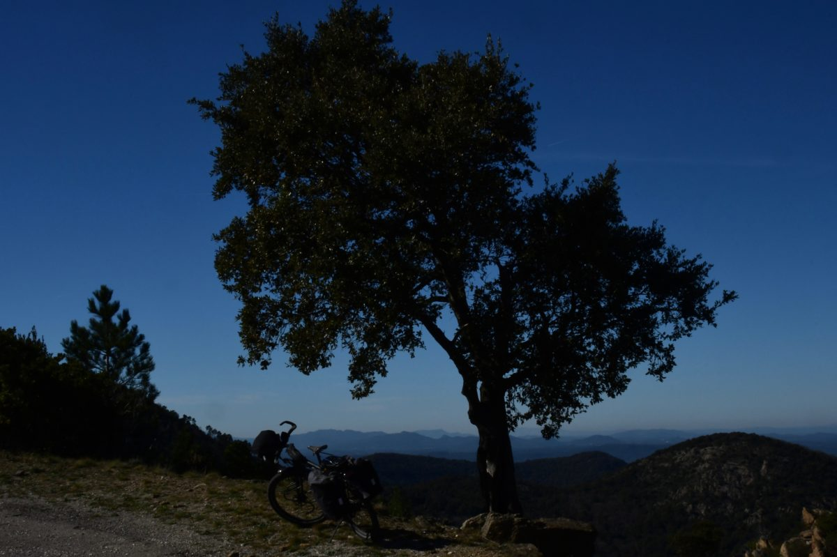 Un week-end dans le massif des Maures (Vivants)