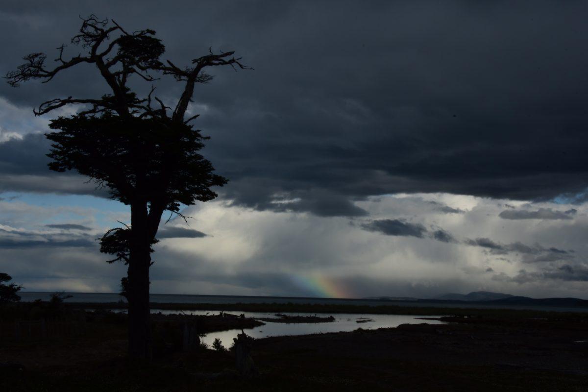 Ainsi tourbillonnent les vents de Patagonie…
